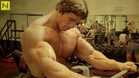 筋トレ肉体でもアーノルドシュワルツェネッガーの肉体はOKだよな?