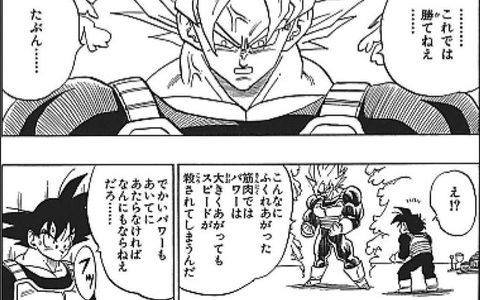 格闘漫画「筋肉を付けすぎると重くなって動作が遅くなる」←コレ