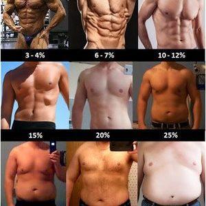 体脂肪10%以下にするなら割と簡単じゃね?