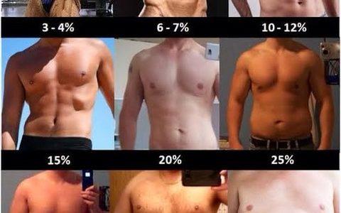 【悲報】男、体脂肪率23%からデブだった