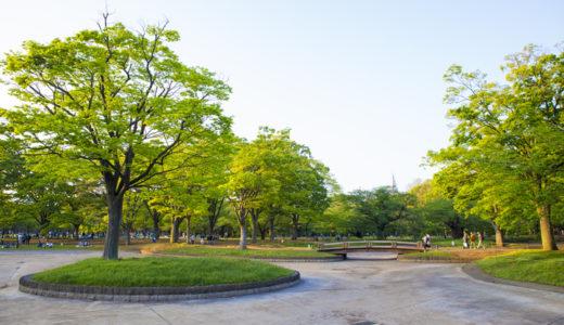 皇居以外も走る。東京都内でおすすめの無料ランニングコース5選