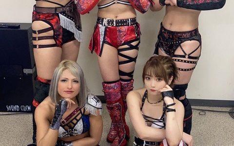 【朗報】最近の女子プロレスラーがヱッチ過ぎるwwwwwww