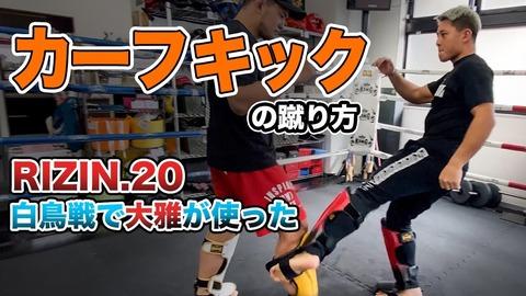 【徹底】世界の格闘技ファンがカーフキックは卑怯だから禁止にすべきだと言ってるけど本当に禁止にすべきなのか?【討論】