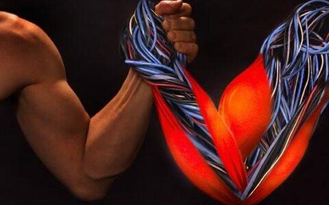 【速報】強力な「カーボンナノチューブの人工筋肉」が開発される 同じ重量の人間の筋肉の29倍の能力