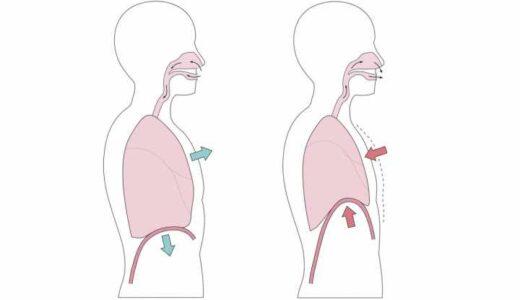 腹式呼吸がうまくできない。正しく行うポイントは?ヨガ専門家が解説