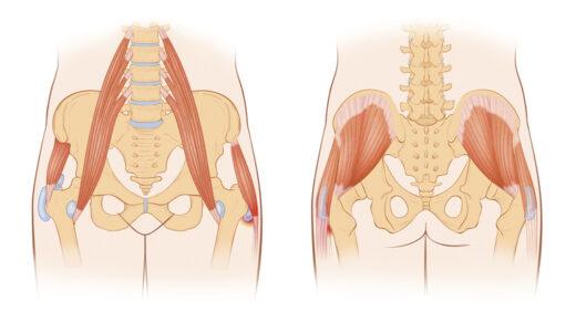 お腹のインナーマッスル「腸腰筋(深腹筋)」を鍛えるトレーニング&ストレッチ
