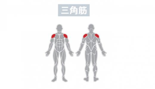 肩の筋肉を鍛える筋トレ│「三角筋」前部・中部・後部を大きくするダンベルトレーニング