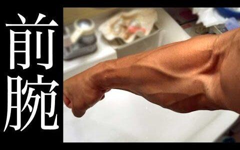 【急募】筋トレで前腕の筋肉つける方法