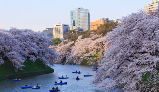 桜の名所を走る。東京都内のお花見ランニング・ジョギングコース5選