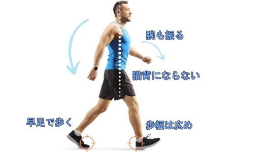 ダイエットに効果的な「正しい歩き方」とは。消費カロリーを高める3つのポイント