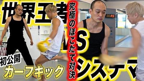 【閲覧注意】格闘技界のカーフキックブーム、終わる