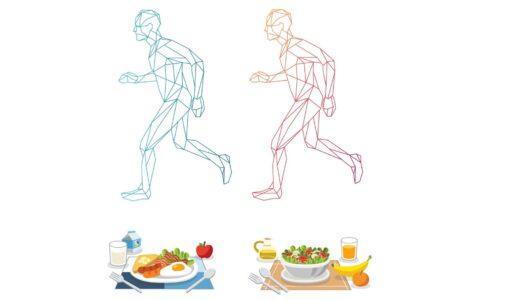 野菜中心の食事で体重と体脂肪は減るのか。ヴィ―ガン食のダイエット効果を調べた実験でわかったこと