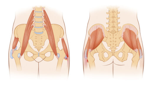 「腸腰筋(深腹筋)」とはどこの筋肉?鍛えるメリットは?効果的な筋トレ&ストレッチメニュー