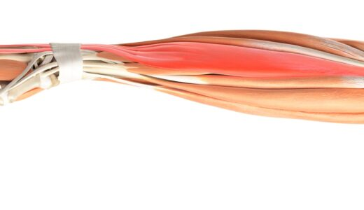 握力の鍛え方 筋トレ効果は「握力」で変わる!鍛えるメリットと強化トレーニング