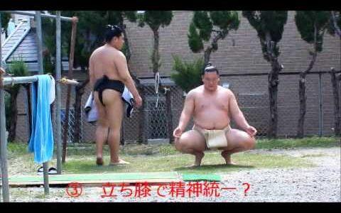 【悲報】白鵬「はぁはぁ…何とか相撲界を盛り上げたぞ!」横審有識者会議週刊誌相撲ファン「白鵬嫌い!消えろ!」