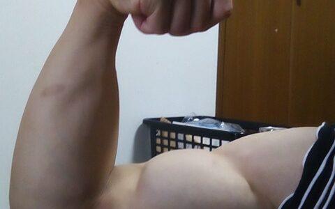 ワイ筋トレ半年目の腕周りを見てくれwwwwwwwwww