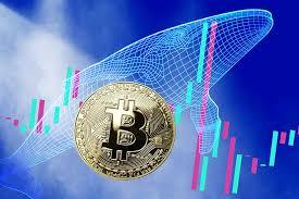 ビットコインは3万4000ドル前後で推移、方向感を探る動き──取引高は大幅低下