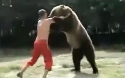 UFCの最強王者が野生の熊と戦った結果wwwwwwwwwwwwwwwwwwwwww【画像あり】