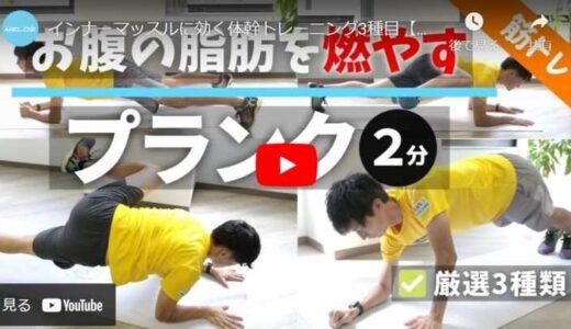 インナーマッスルに効く体幹トレーニング3種目【初級&中級者向け】